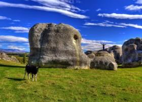 Elephant Rocks & Mount Cook